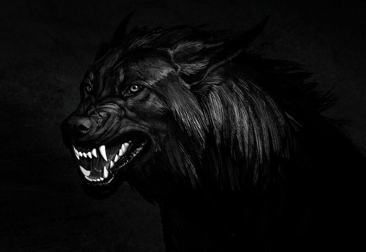 Dog Squad: A Popular Horror Myth about Aliapur Village, Bangladesh