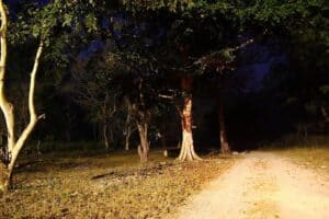 Haunted Delhi Cantonment India