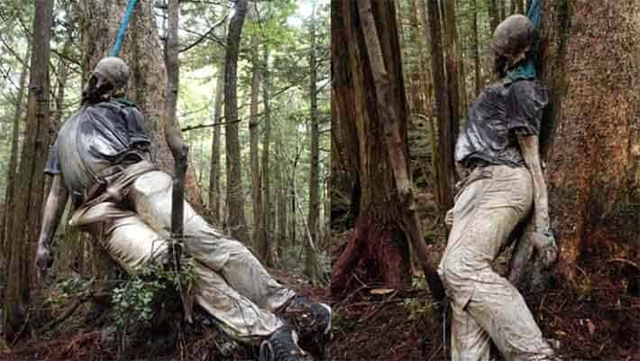 Suicidal Dead Body in Aokigahara Forest