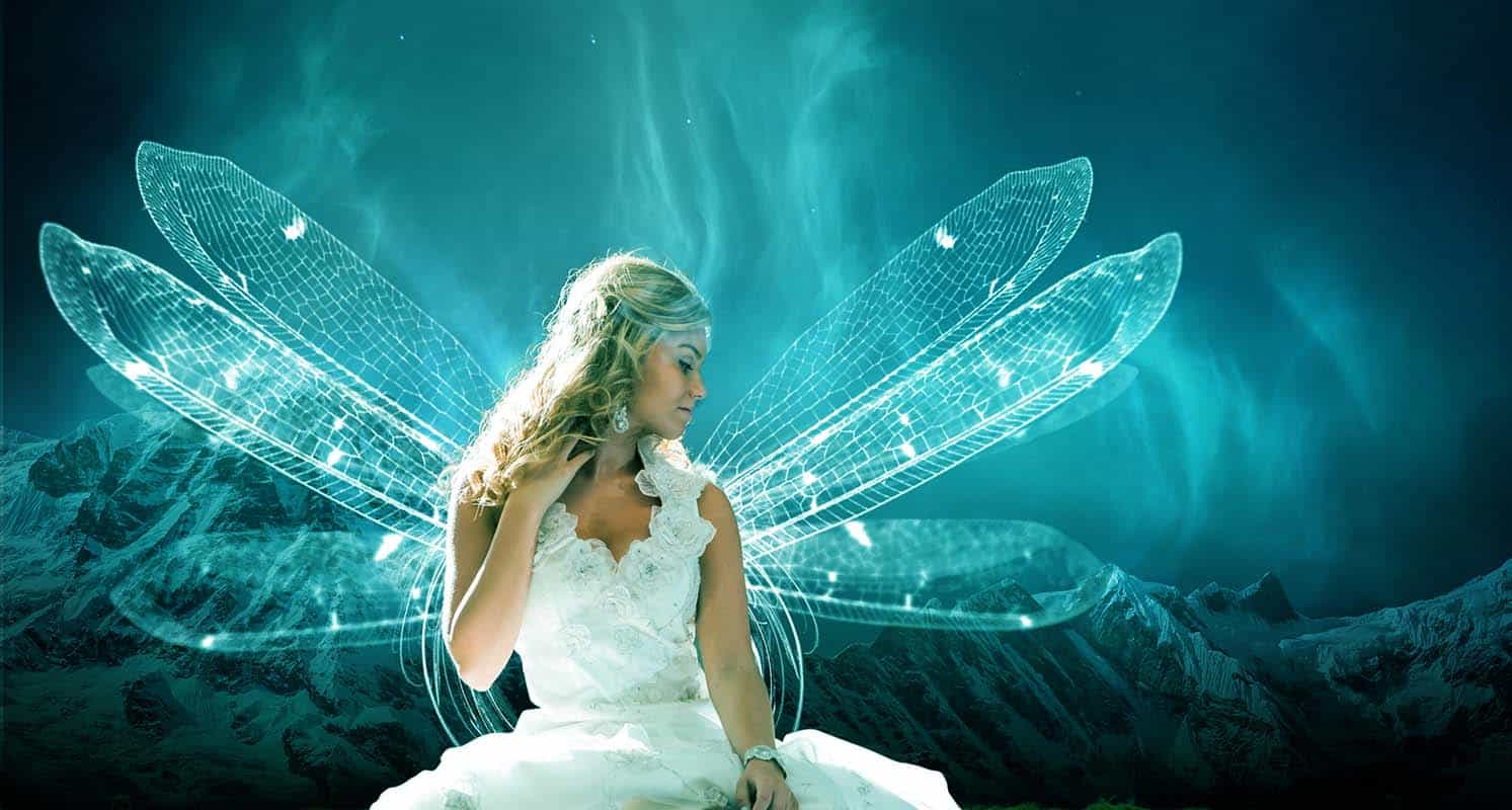 Fairy in Dreamland